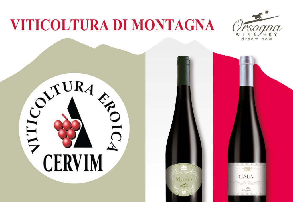 Vini-Cervim-Orsogna-Winery