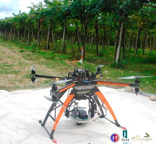 Drone-Sui-Vigneti-Cantina-Orsogna-01
